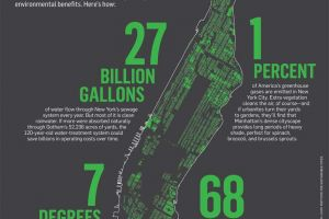 Newsweek: How Green is the Big Apple?