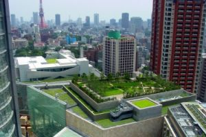 The Urban Sustainability Extension Service (USES)